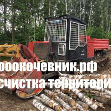 Корчевание пней, деревьев, лесополос, садов на itebe.ru [3]