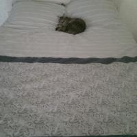 Кровать двухспальная Размер 160/220