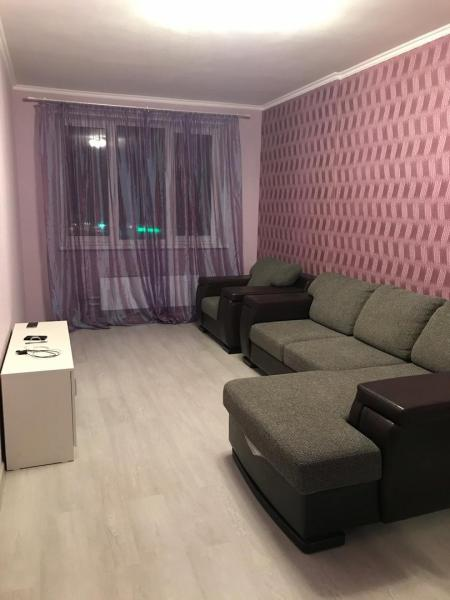 однокомнатную квартиру на длительный срок