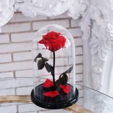 Роза в колбе Имеет несколько цветов