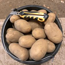 Фермерский картофель на itebe.ru [2]