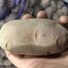Фермерский картофель на itebe.ru [3]